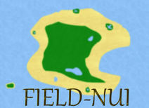 FieldNuiMap