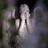 ZivTargaryen's avatar