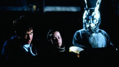 How Twisted Superhero Movie 'Donnie Darko' Became a Cult Classic
