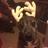 VersaKT's avatar