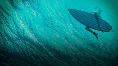 'The Shallows': Script to Screen