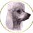 Dandyclaw's avatar