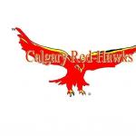 Chet Gecko's avatar