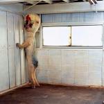 TheSCP173Sculpture's avatar