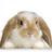 Divine618's avatar