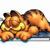 GarfieldDieKatze