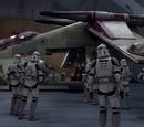 41st Stormtrooper Legion