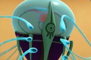 Close Up Sycphozoa