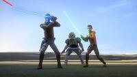 Sword and Shield maneuver