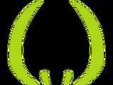 Horn Company