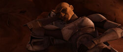 Scythe-sleeping