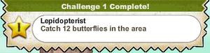 Lepidopterist