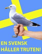 En svensk håller truten