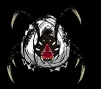 Araña reina