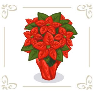 Poinsettiaplant