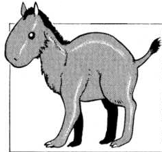 File:Hyracotherium.png