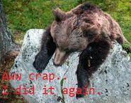 Bear aww..