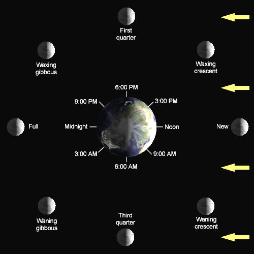 Image Lunar Phase Diagramg Calendar Wiki Fandom Powered By