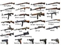 CoD WaW Weapons