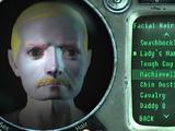 Grognak (Fallout 3)