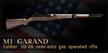M1 Garand Menu Icon CoD3.png