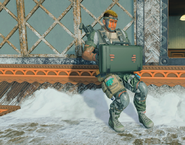 Call of Duty Black Ops 4 Часовой установка