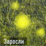 Заросли бо3 иконка