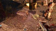 Zombiemonkey powerup 640x360