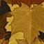 Осень камо код г