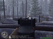 Перестрелка в лесу