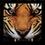 Tiger emblem MW2