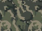 Woodland Camouflage