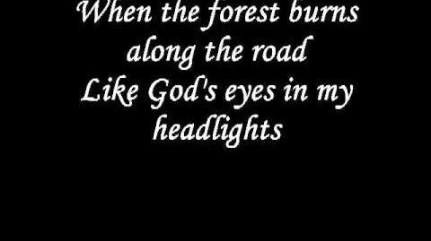 Johnny Cash - Rusty Cage Lyrics (HQ)
