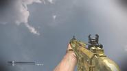 Maverick Gold CoDG