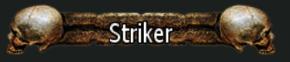 Striker5