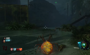 Spider Bait Zombies BO3