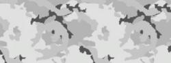 Weapon camo menu arctic