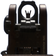 MSBS iron sights CoDG