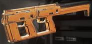 Type-2 Butcher model IW
