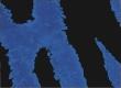 Синий тигр иконка