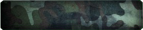 File:Faded Camo Background BO.png