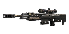 Menu mp weapons dsr1 big
