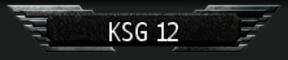 KSG12.3