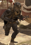 SDC Soldier LMG BOII