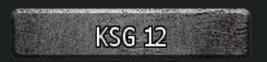 KSG12.1