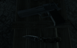 COD4 Desert Eagle down the rabbit hole MW3