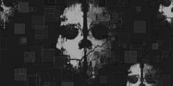 Ghosts Camouflage menu icon BOII