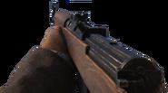 Gewehr 43 WWII