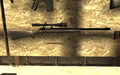 R700 FNG COD4.png