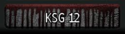 KSG12.2